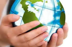 Global HR Professional