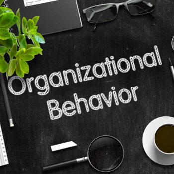 organizational behavior research topics